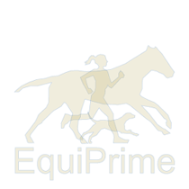 Equusir BIONIC REGENERATION 0,5 Liter Spray
